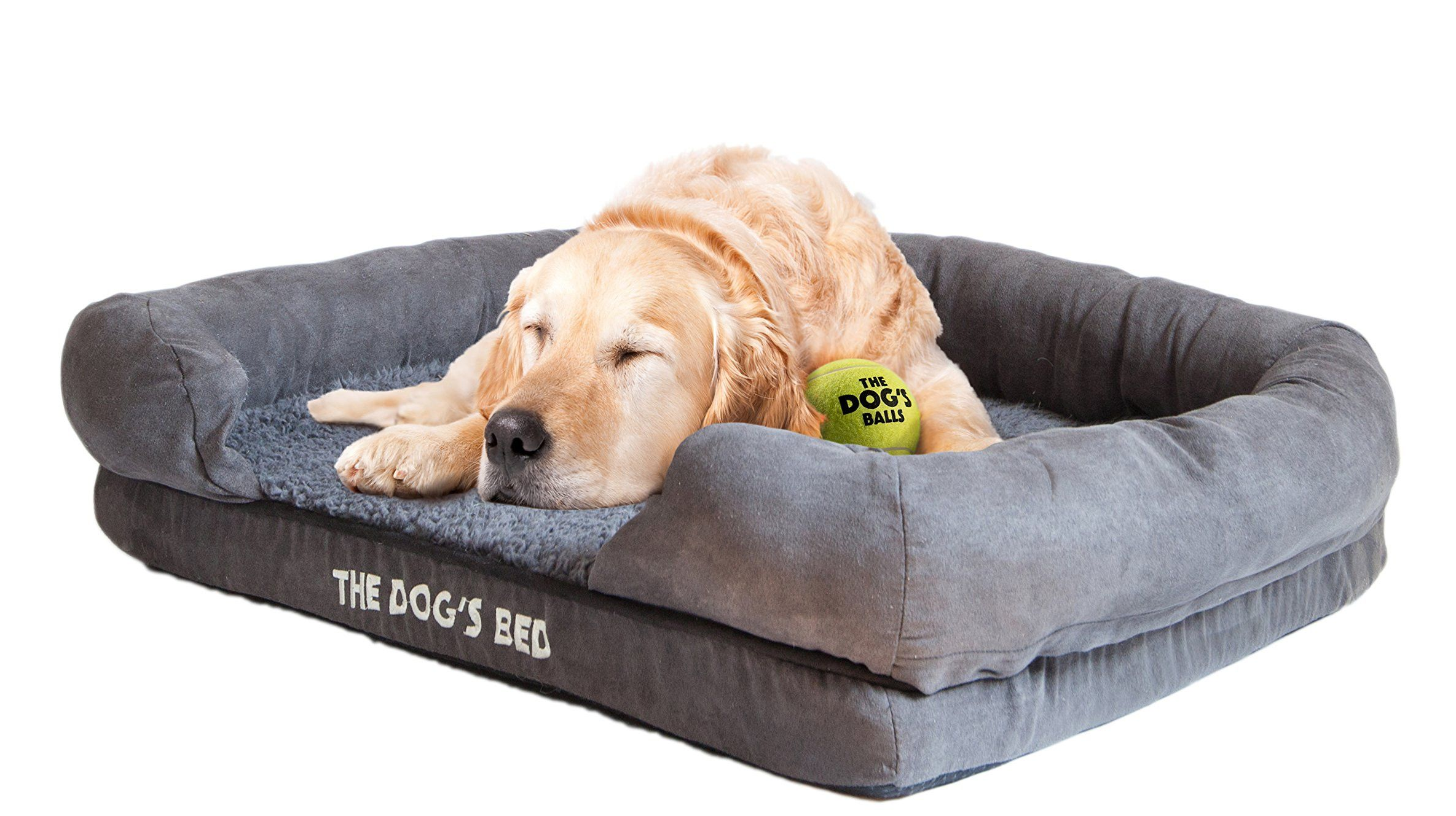 Top-Best-Dog-Beds-for-your-buddy-1.4