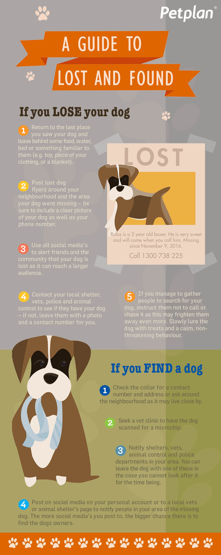Lost-and-Found-Dog-Infographic