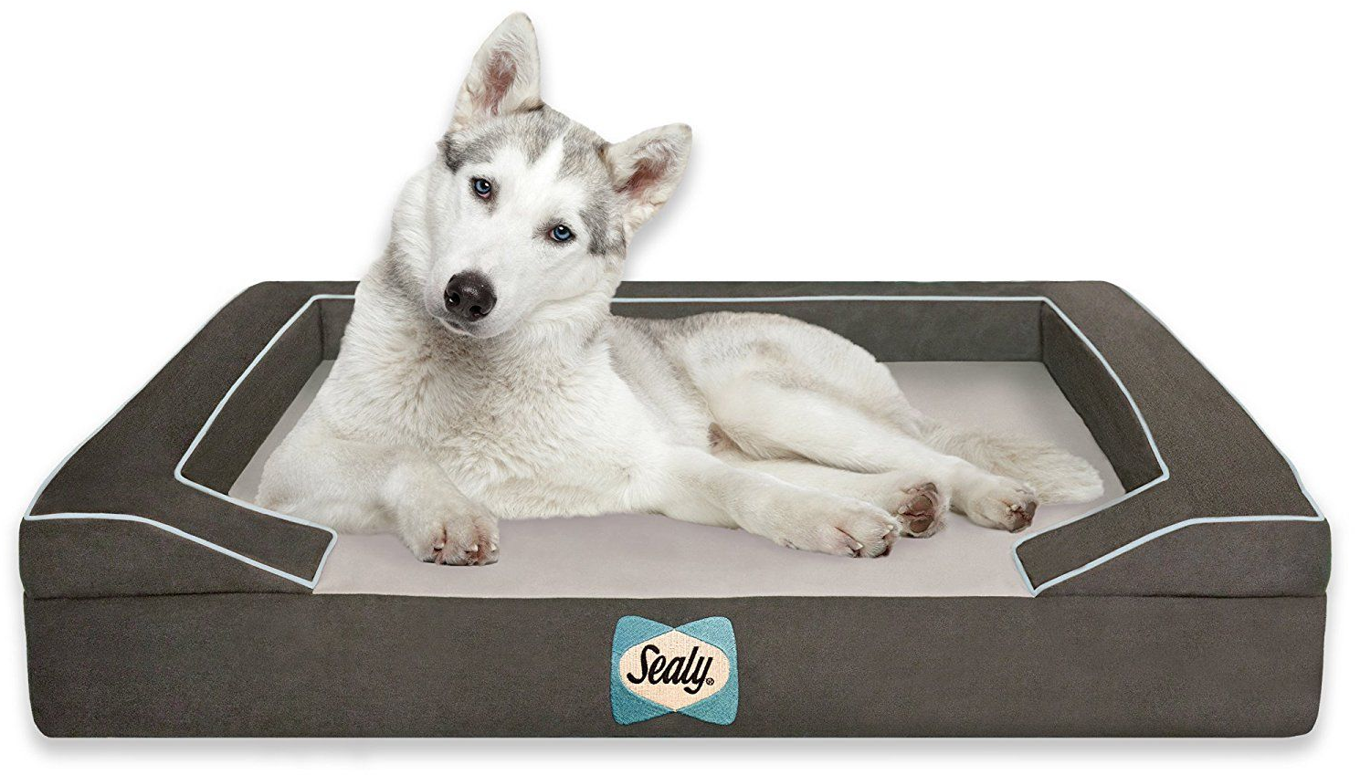 Top-Best-Dog-Beds-for-your-buddy-1.5
