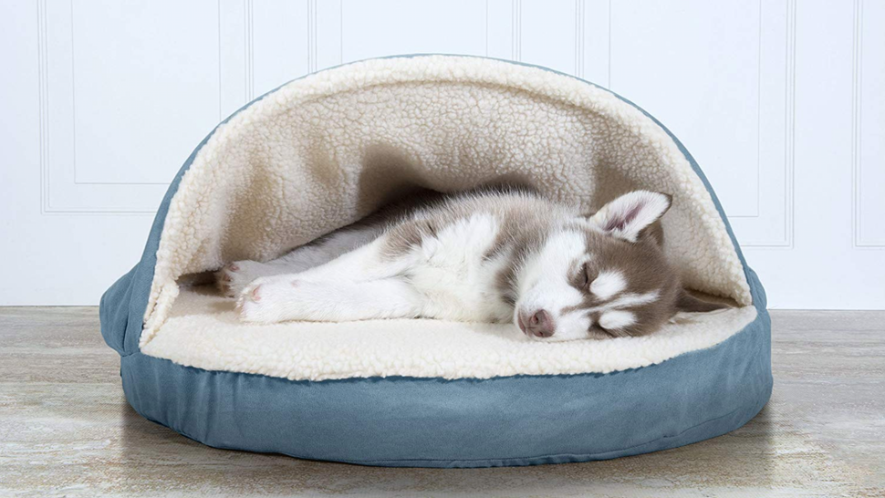 Top-Best-Dog-Beds-for-your-buddy-7