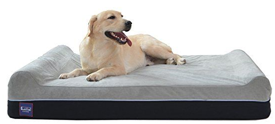 Top-Best-Dog-Beds-for-your-buddy-1.7